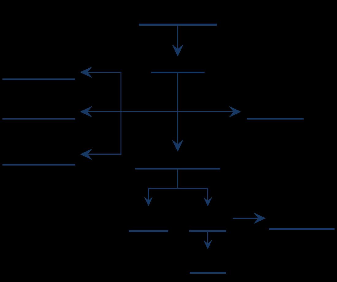 organigrama-para-el-sitio-web-seccion-directorio